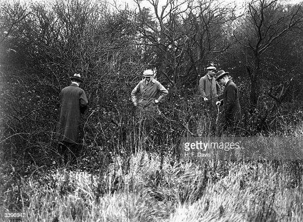 Policemen at work searching an area of woodland for clues after the disappearance of English author Agatha Christie