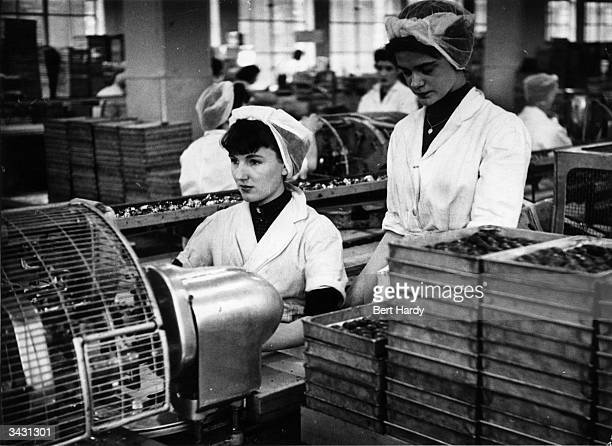 Girls at work wrapping chocolates at Cadbury's model factory at Bournville Birmingham Original Publication Picture Post 6979 The Best And Worst Of...