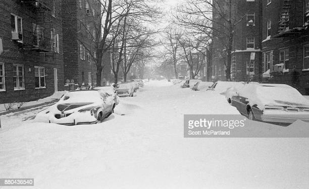 Vehicles parked on a residential street are quickly buried in deep snow during the height of the Blizzard of 1978
