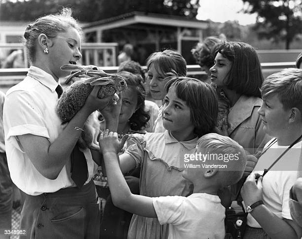 A zoo hostess holds two Dutch rabbits for some young visitors at the much improved Children's Zoo at London Zoo in Regents Park London