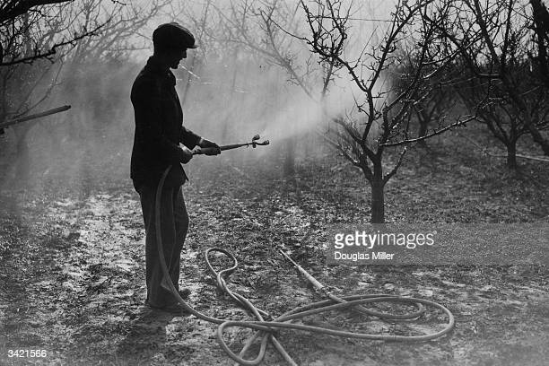 A man spraying fruit trees with pesticide using a powersprayer the Tetco Variable Nozzle Demon Sprayer at the East Malling Research Station in Kent