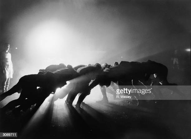 Players in a scrum during a rugby match are silhouetted by floodlights.