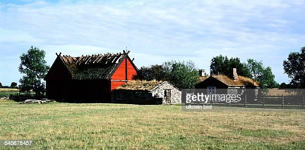 6x12 COL Insel Öland: Landschaft mit Bauernhof - 1999