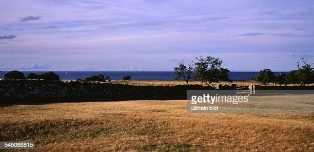 6x12 COL Landschaft auf der Insel Farö 1999