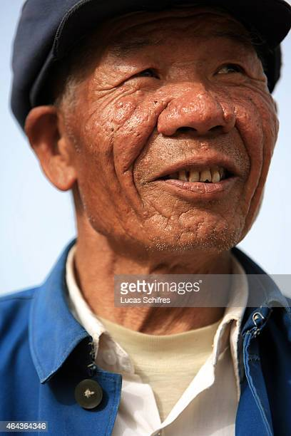 70year old farmer Qi Shenglian in his fields claimed back from the Tengeli desert on May 8 2007 in Yinchuan Ningxia Province China
