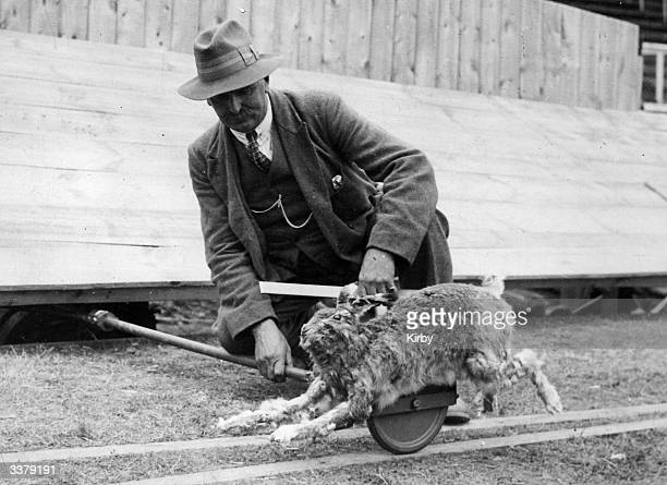 Groundsman at White City Stadium inspecting the new mechanical hare, used to motivate racing greyhounds, after its first day of work.