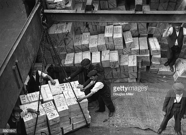 Workmen unloading the first consignment of dried fruit from a ship's hold at London Docks