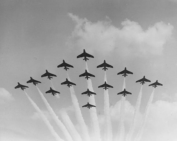 Formation Flying Wall Art