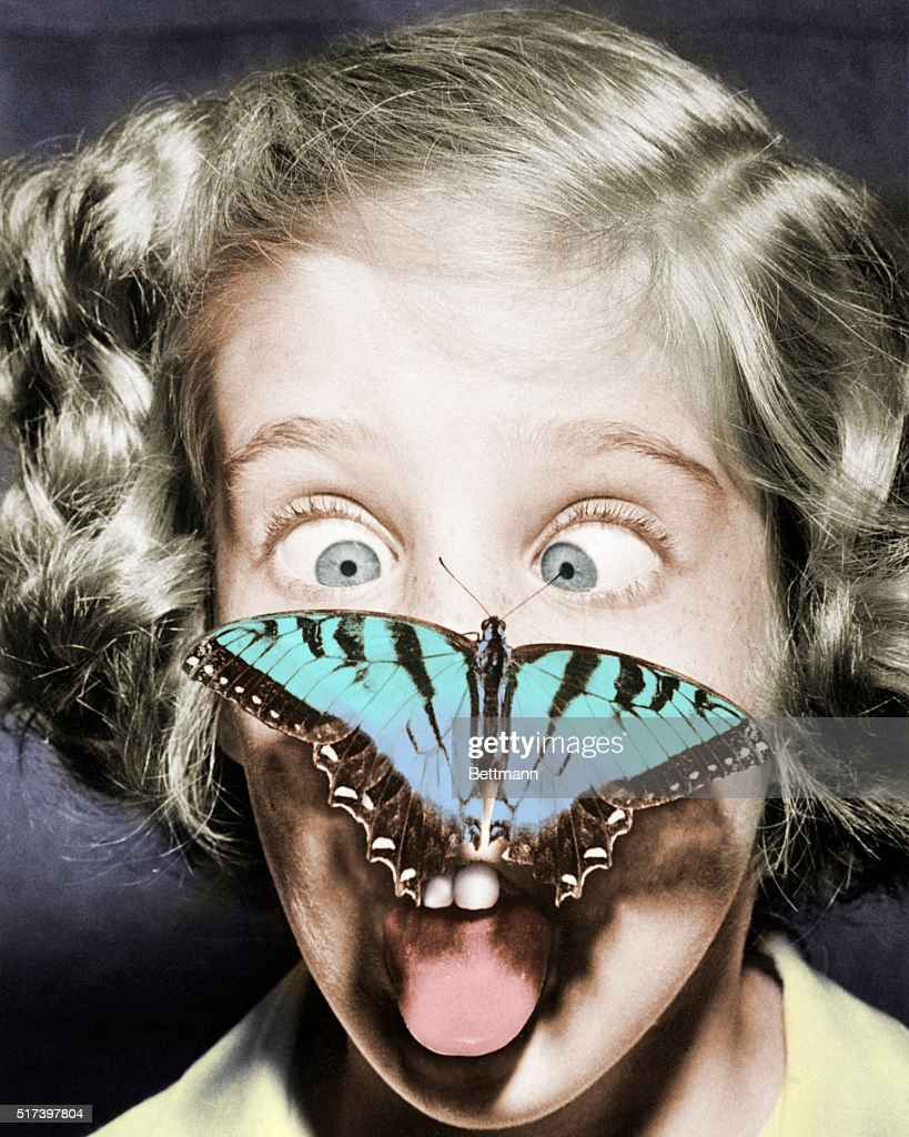 West Hempstead, Long Island, New York- Tired of being stared at, this handsome butterfly decided to return the compliment by perching on the nose of Susan Bermann, 9, for a close-up look at the little miss. Susan registered cross-eyed amazement at the butterfly's audacity.