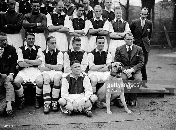 The Arsenal football team with their bullmastiff mascot Gunner at Highbury London