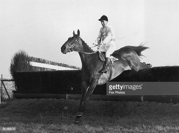 Jockey Richard Francis, who later gained fame as a writer of sporting thrillers, rides Devon Loch, the property of Elizabeth the Queen Mother.