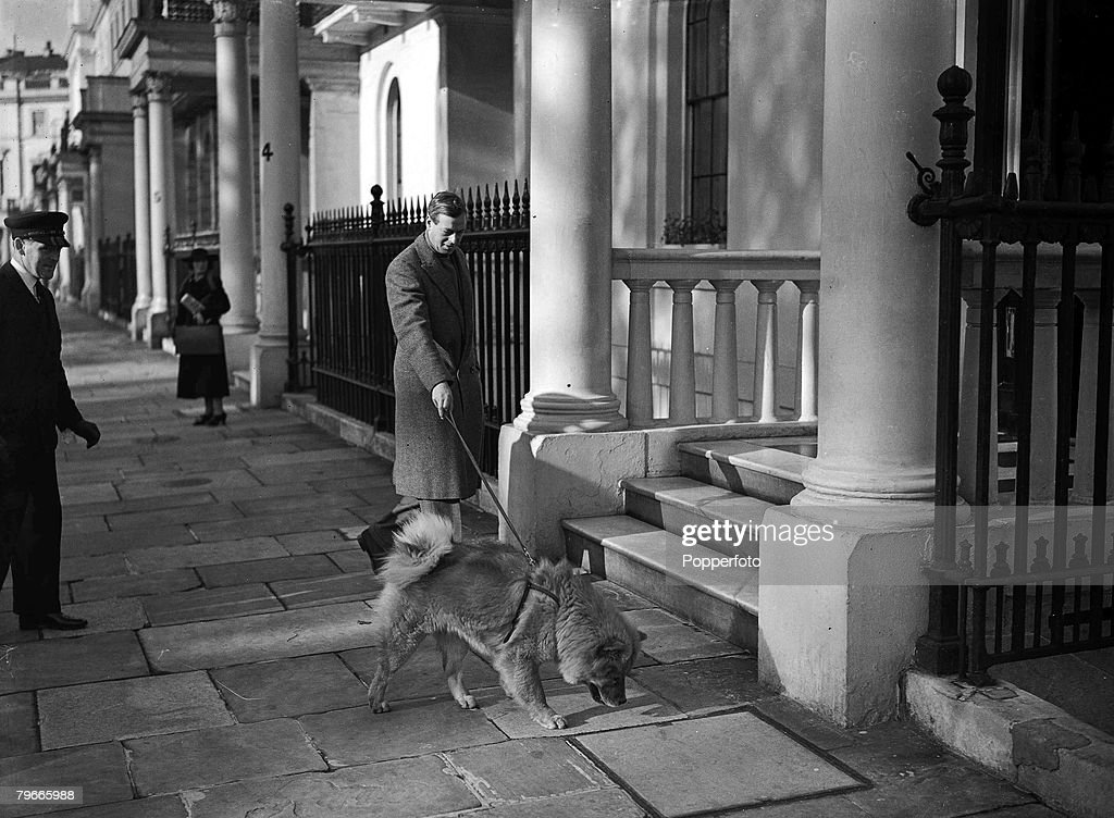 8th October 1938, London, England, The Duke of Kent is pictured walking his pet Chow dog in London+s Belgrave Square : News Photo