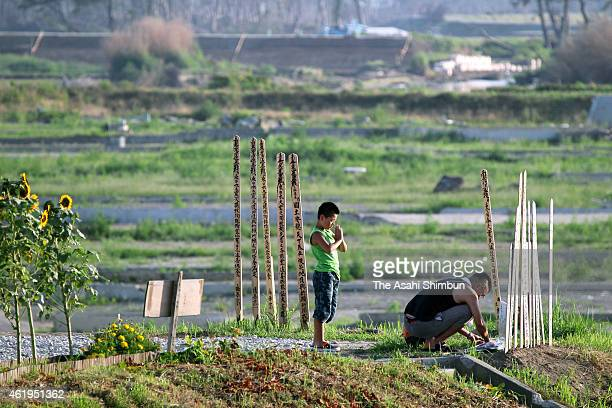 8yearold Shuta Abe prays for his grandaunt who lost her life by the subsequent tsunami of the Magnitude 90 strong earthquake while Kenji Abe offers...