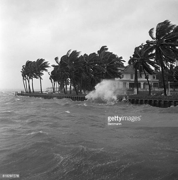 9/11/1960Miami FL An example of the beating which water front property takes during a hurricane Waves driven by 60mileanhour winds on the outskirts...