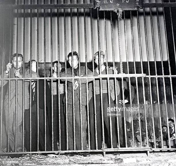 Belgium: Belgians who worked with the Nazi Gestapo are held in the lion cage at a zoo in Belgium awaiting trial for treason following the city's...