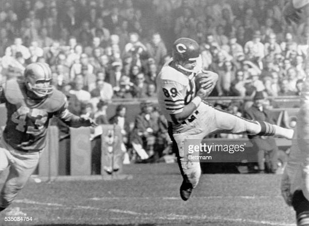 Detroit, MI-: Chicago Bears end Mike Ditka comes down with a touchdown pass from Bear quarterback Bill Wade during the 2nd quarter Lions-Bears game....