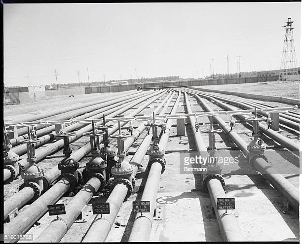 These pipes are part of the huge maze of pipe lines leading from the Iranian oil fields to the world's largest refinery at Abadan which was recently...