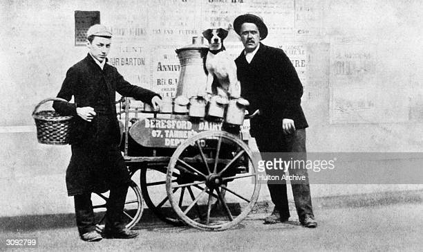 Milkman with his float dog and boy a caption reads'On the milk round with Harry Hanford'