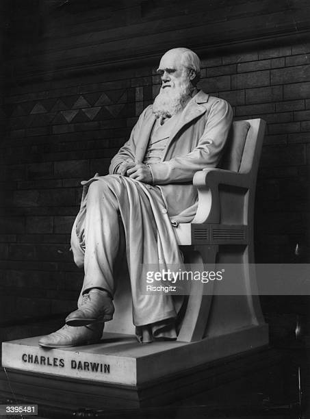 A marble statue of English naturalist Charles Darwin by Sir J E Boehm at its unveiling at the Natural Histroy Museum London