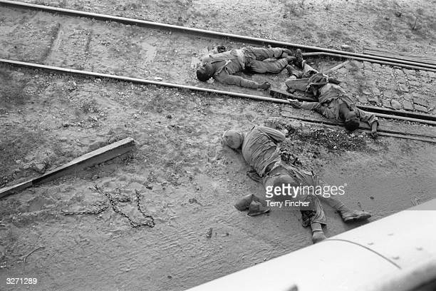 Dead Egyptian soldiers in the path of the Israelis following the Six Day War in the Middle East