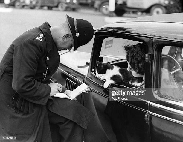 A policeman checks a motorist's driving licence while her cat looks on out of the car window