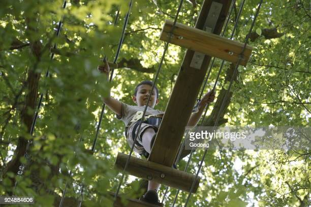 9yearold boy on a ropes course France