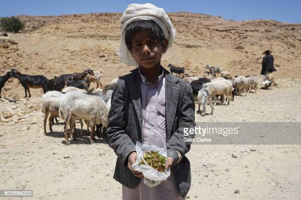 A 9yearold shepherd sells qat on the roadside Qat has taken over much of Yemen's agricultural sector with farmers increasingly opting to grow the...
