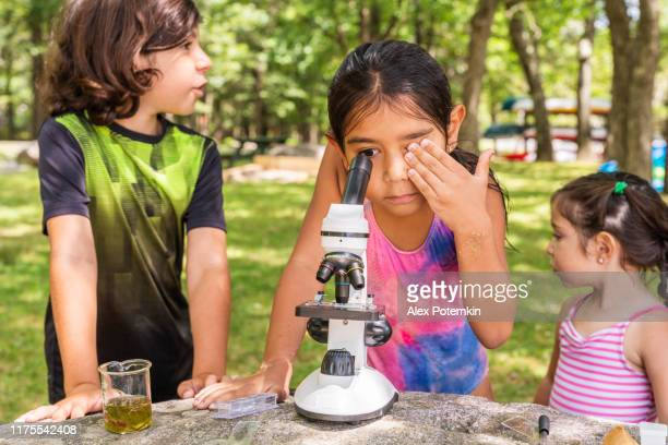 9-years-old boy and 7-years-old girl using a microscope, looking and learning nature - outdoors at the lakeshore in the sunny summer day. 4k uhd video footage. - 6 7 years stock pictures, royalty-free photos & images