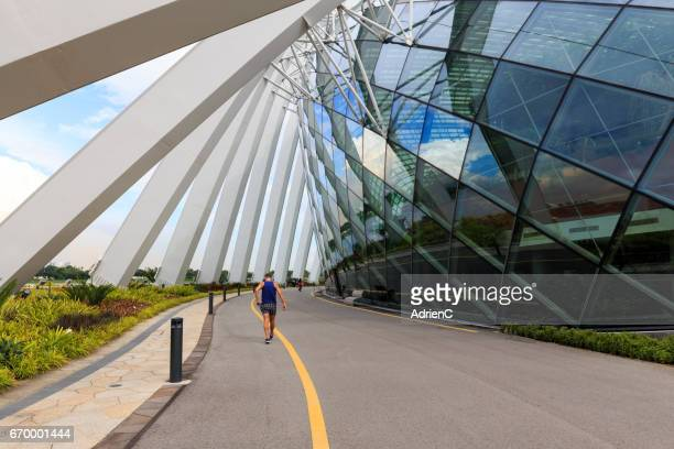 a athletic person is running through road in a modern city - personne humaine stock-fotos und bilder