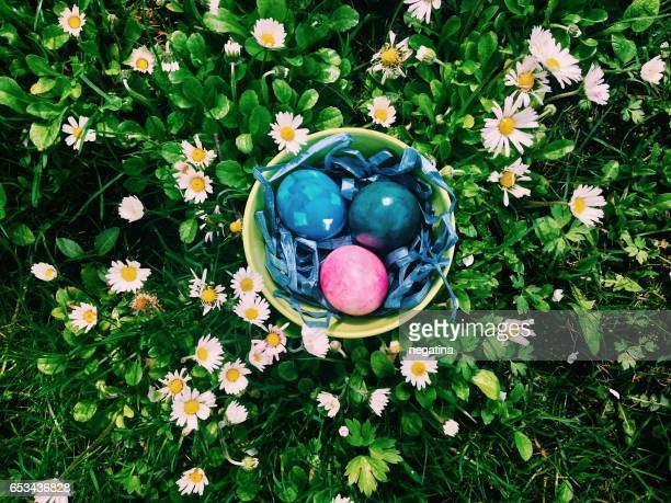 a bowl with color painted eggs on the meadow