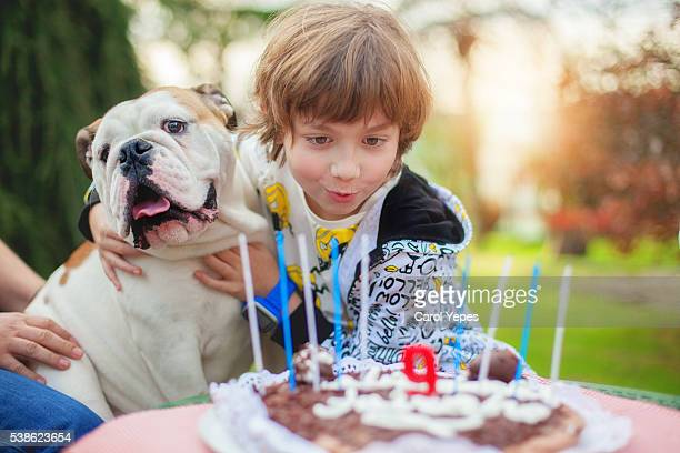 a boy blowing  out candles  in his birthday cake with his dog - couple tongue kissing stock photos and pictures