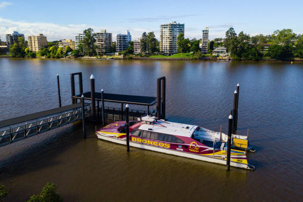 a Citycat ferry on the Brisbane River, Brisbane, Australia, with a Broncos football team logo.