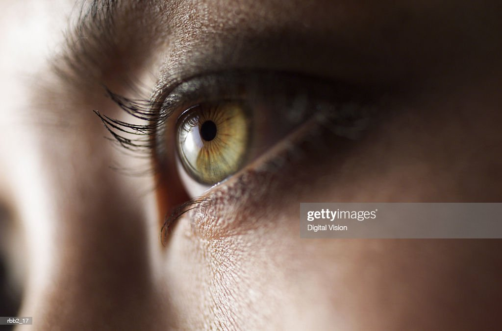 a close up shot of a beautiful green eye : Stock Photo