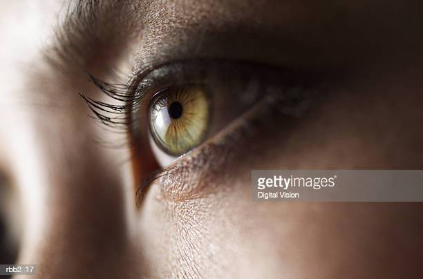 a close up shot of a beautiful green eye - green eyes stock pictures, royalty-free photos & images
