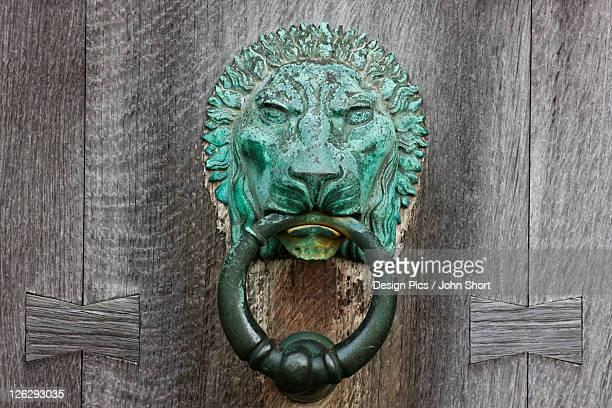 a copper lion door knocker on a wooden door