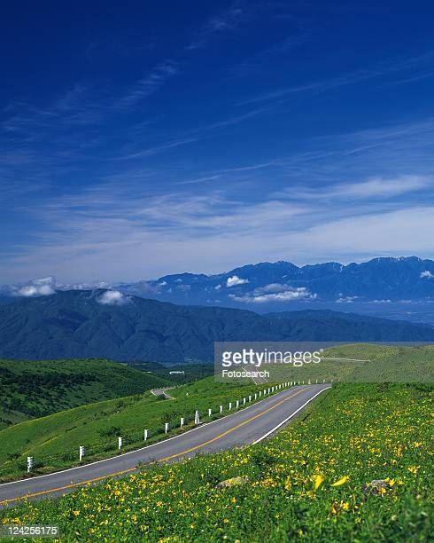 a Country Road Next to a Rape Blossom Field, High Angle View, Nagano Prefecture, Japan