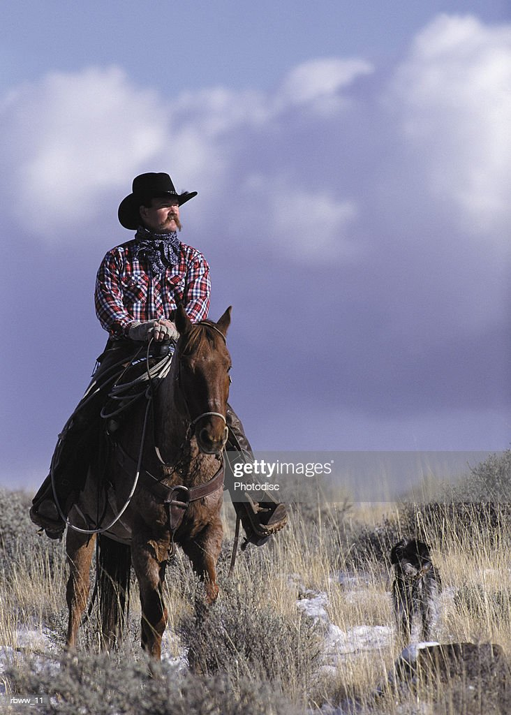 a cowboy poses on his horse with his dog : Stock Photo