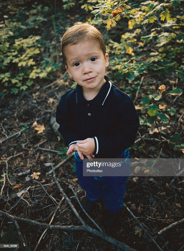 a cute young boy wearing a blue shirt and jeans is playing among the trees and bushes in the forest : Stockfoto