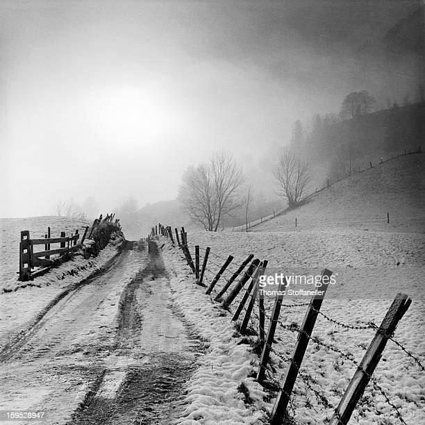 CONTENT] a foggy mood at morning in the countryside near Matrei EastTirol Austria in Winter Hasselblad 500CM black/white film