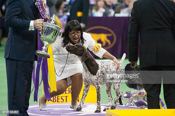 J a German Short Haired Pointer wins Best in Show on the second day of the 140th annual Westminster Kennel Club dog show at Madison Square Garden on...