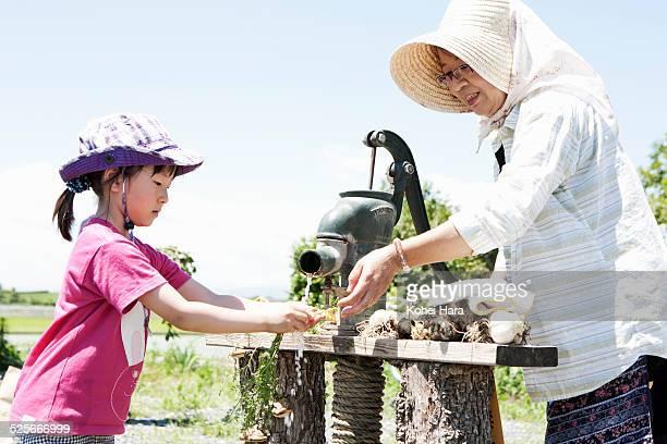 a girl and senior woman doing farm work