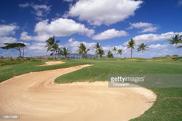 a Golf Course, Surrounded By Several Palm Trees Under a Blue Sky