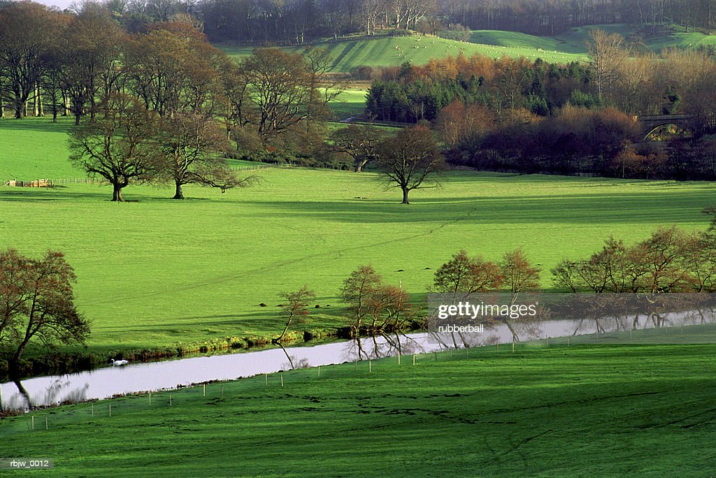 a green european grassland is bordered by a small stream and trees : Stockfoto