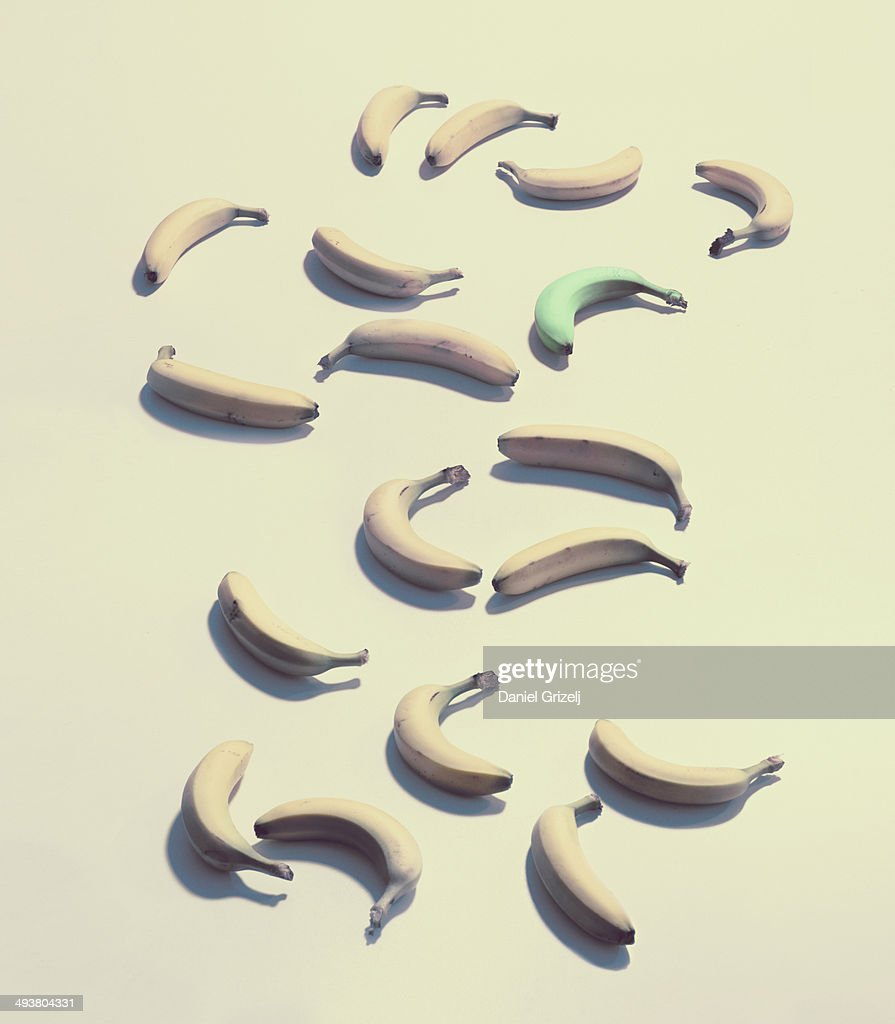 a group of bananas with one green banana : Stock Photo