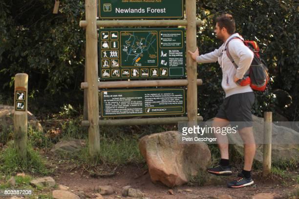 a hiker looks at a map of the forrest. - reserva natural parque nacional fotografías e imágenes de stock