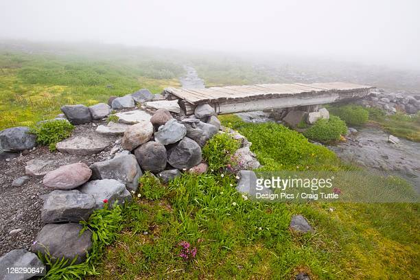 a hiking trail in the fog with a bridge over a stream in paradise park in mt. rainier national park