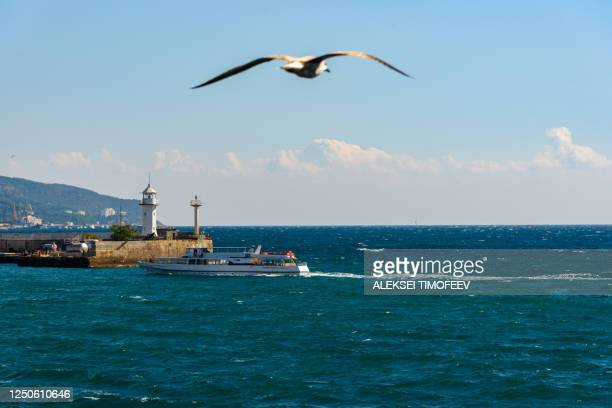 a lighthouse in the port of the resort city of yalta, on a bright sunny day with clouds in the sky, a telescope on the horizon and a flying seagull in the sky. - crimea stock pictures, royalty-free photos & images