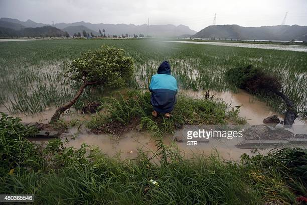 a man looks at flood water submerged farmland amid a heavy storm brought by typhoon Chanhom in Sanmen east China's Zhejiang province on July 11 2015...