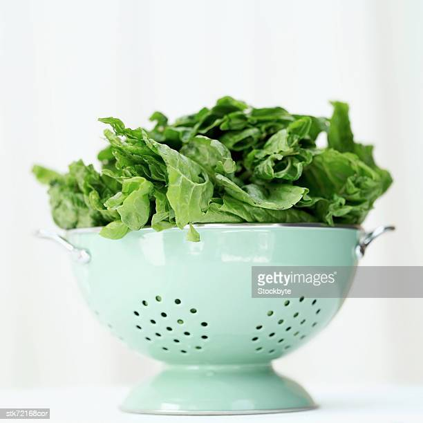 a metal colander with green leaves - colander stock photos and pictures