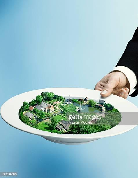 a plate full of dutch landscape